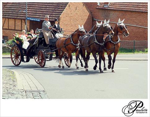 ReiterHochzeit_Propstei_Johannesberg_Fulda