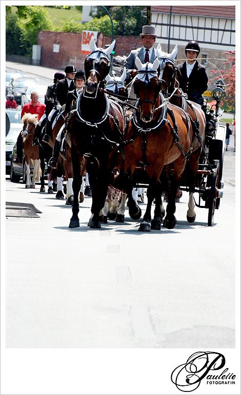 Vierergespann Kutsche mit braunen Pfereden zieht die Hochzeitskutsche mit Reitergefolge in Fulda Bronnzell.