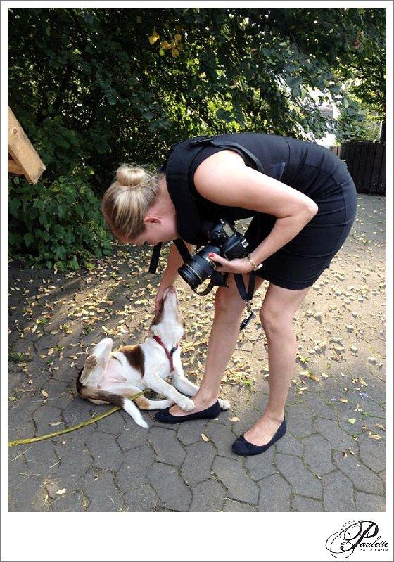 Fotografin streichelt Welpen am Sippelshof in Fulda Sickels an einer Hochzeit.